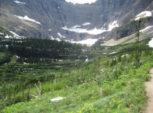 Trail to Iceberg Lake - Photo by GlacierGuyMT