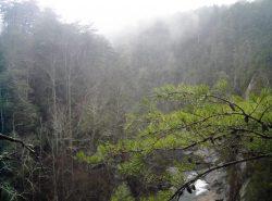 Gorge