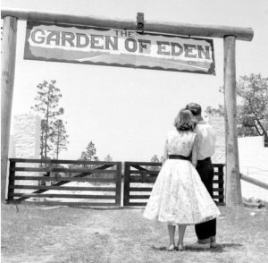 The entrance as it looked in the 11950s - Florida Memory photo