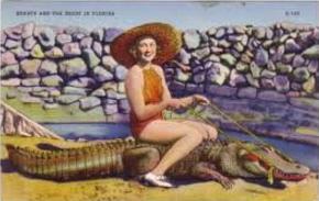 gatorgirl